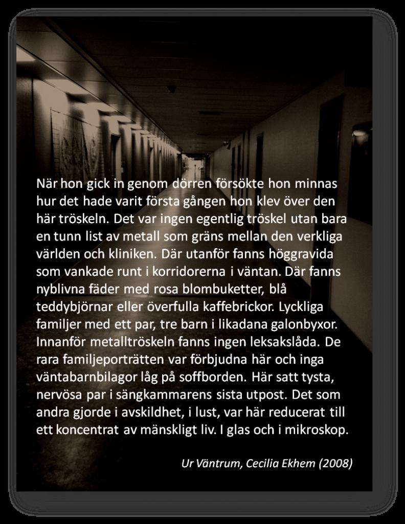 www.ekhemmanet.se